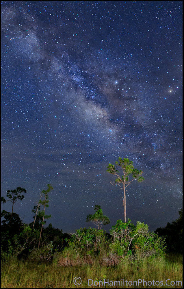 Milky-Way-PineLands-Crop MG 3703